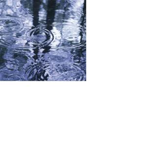 Можно кататься в дождь