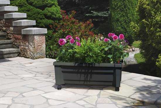 «Калипсо» ящик для растений 37395 фото