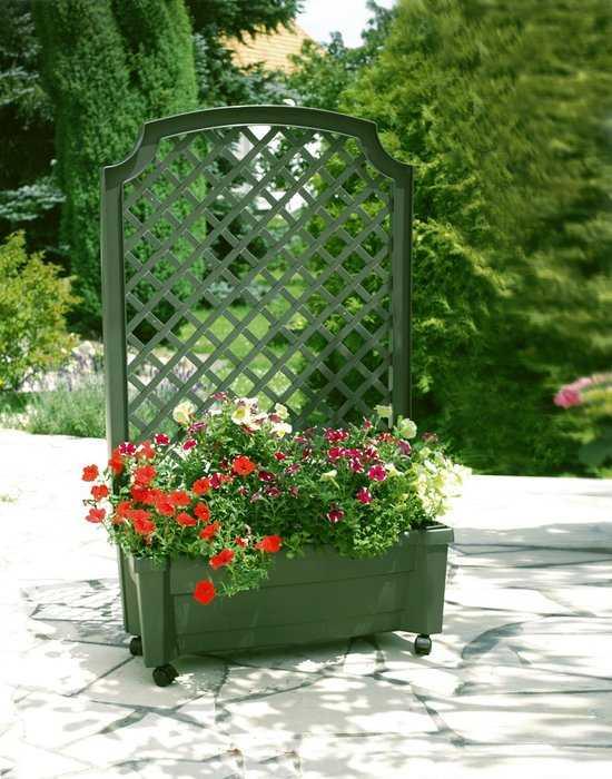 Ящик для растений с шпалерой на колёсах «Калипсо» 37303 фото