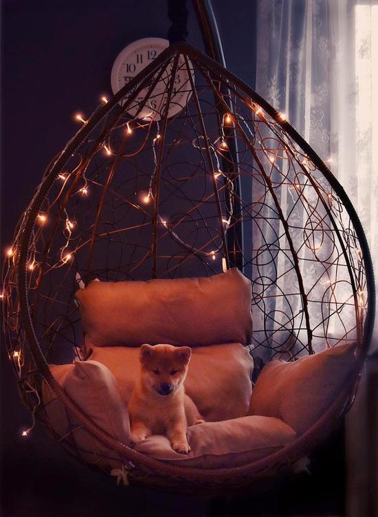 Фото №15 Подвесное кресло-кокон SEVILLA горячий шоколад + каркас