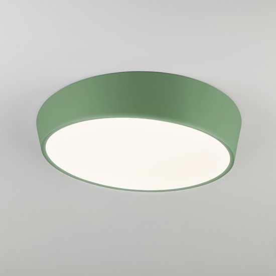 Светодиодный потолочный светильник 90113/1 зеленый фото