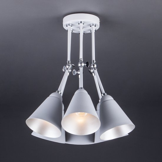 Фото №9 Потолочный светильник с поворотными рожками 70052/6 серый/серебро