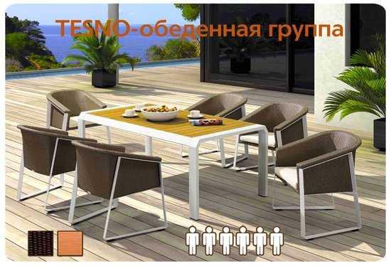 Обеденный комплект мебели из ротанга TESNO-202420 фото