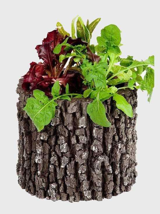 Горшок-цветочница вертикальный M фото