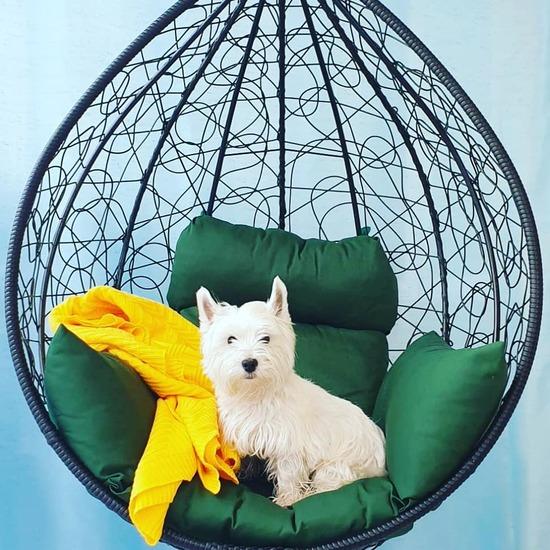 Фото №7 Подвесное кресло-кокон SEVILLA коричневое + каркас