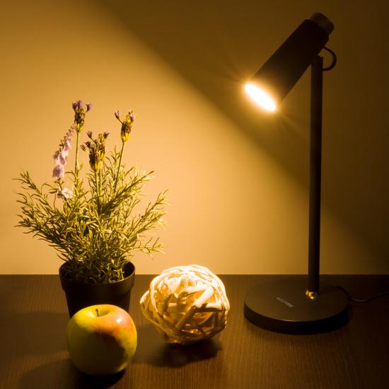 Фото №7 Светодиодный настольный светильник Joel черный/золото (TL70190)