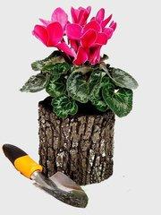 Фото №2 Горшок-цветочница вертикальный S