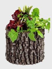 фото Горшок-цветочница вертикальный дуб M
