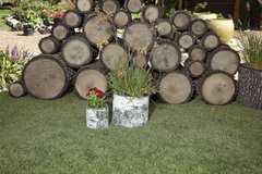 Фото №5 Горшок-цветочница вертикальный берёза М