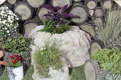 Фото №6 Горшок-цветочница вертикальный береза L