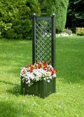 Фото №2 Маленький ящик для растений с шпалерой 37203