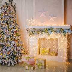 фото Праздничная гирлянда БАХРОМА белый 1,8*0,6м IP20 100-001