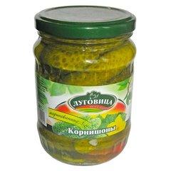 фото Огурцы Луговица корнишоны маринованные с зеленью 720 мл