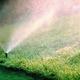 Фото №2 Газонное покрытие ERFOLG Home&Garden