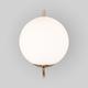 Фото №5 Настенно-потолочный светильник со стеклянным плафоном 70153/1